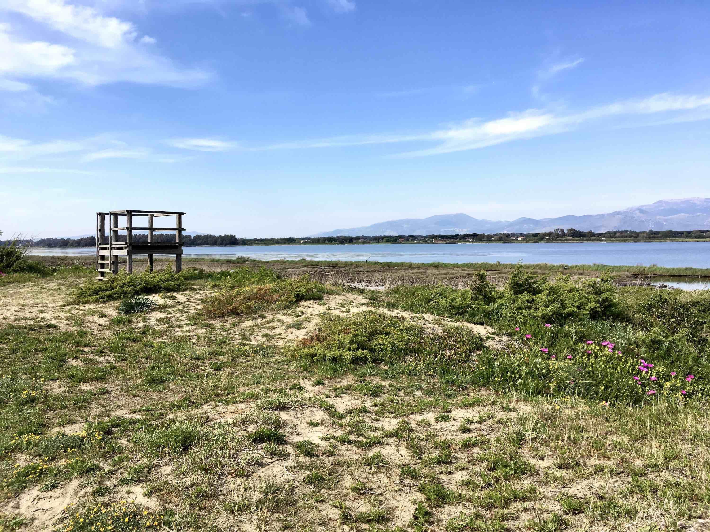 Al Parco del Circeo la gestione del SIC-ZSC marino