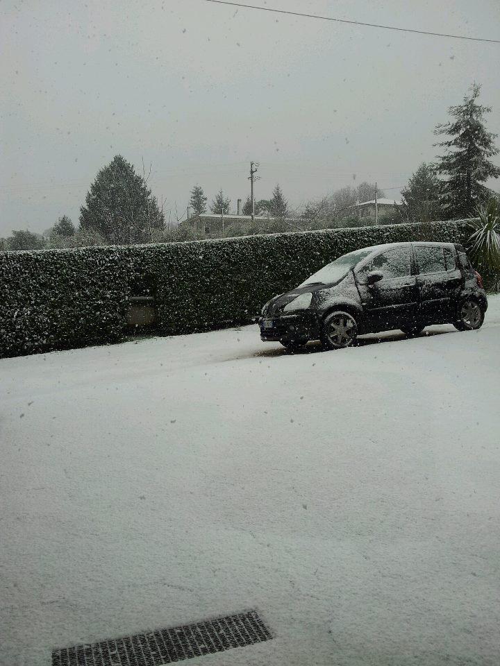 Velletri Neve