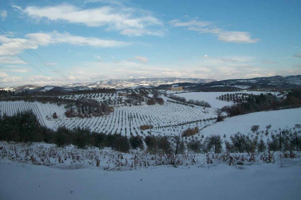 Tavarnelle Val DI Pesa Neve